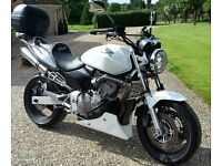 Honda hornet 600cc for sale