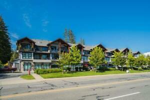 203 13585 16 AVENUE Surrey, British Columbia