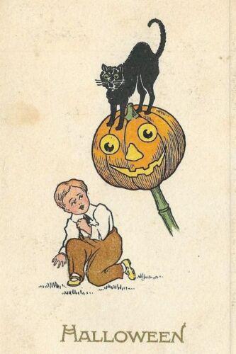 CE-234 Halloween Boy Black Cat and Jack O