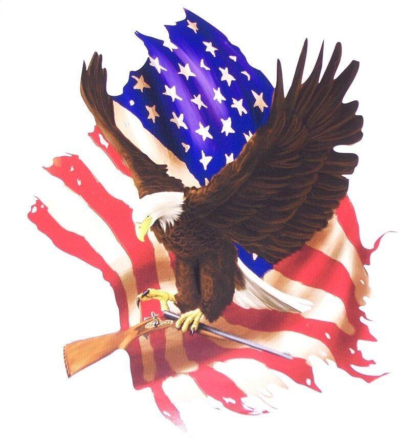 American Flag GUN Eagle decal Camper RV motorhome mural graphic Sticker decals