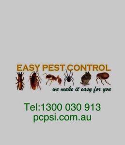 Professional termites problems solver Ashgrove Brisbane North West Preview