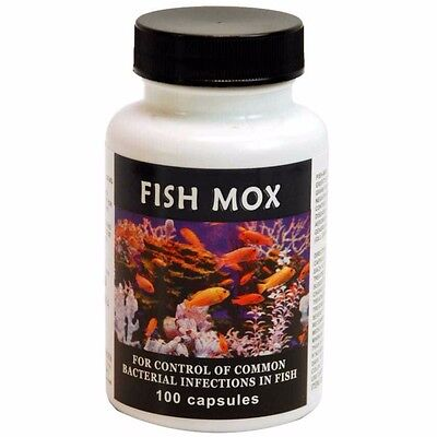 Thomas Labs Fish Mox 100 Count 250mg Aquarium And Pond Infections Treatment New
