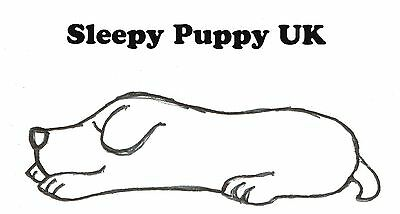 Sleepy Puppy UK