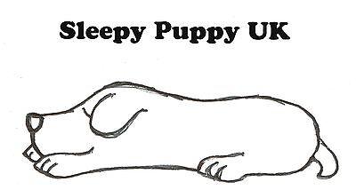 Sleepy Puppy UK