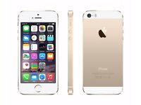 iPhone 5S White/Gold Excellent Condition