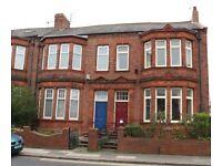 Amazing rental opportunity, The Westlands, High Barnes, Sunderland