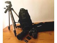 Nikon D40 + 2 lenses, bags, remote and tripod