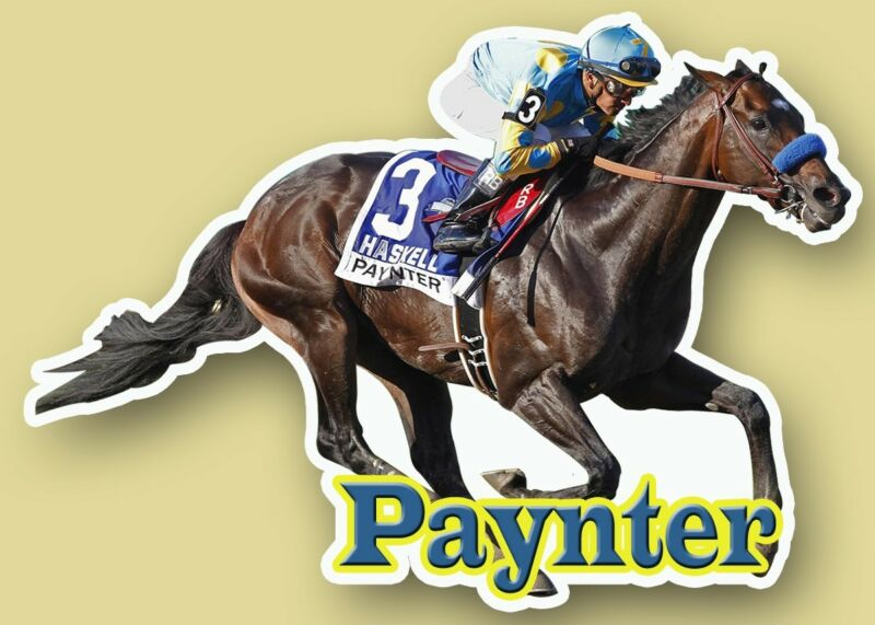 Paynter Full Color Decal