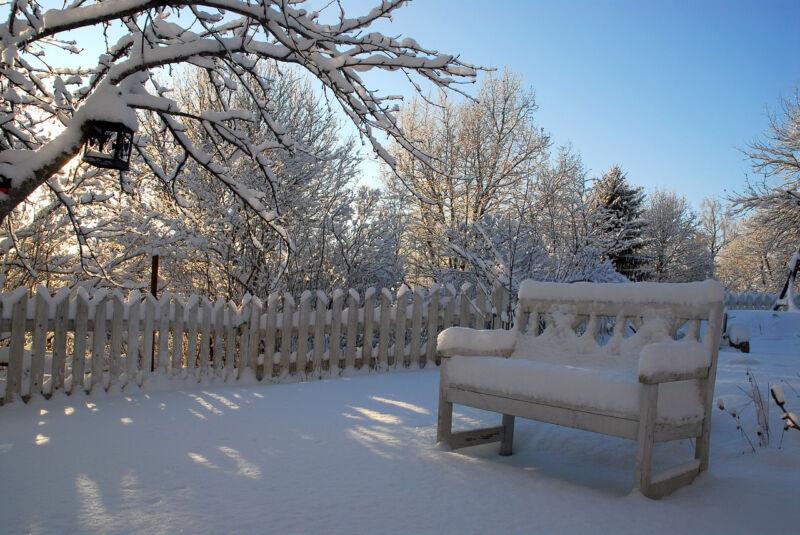 Vorbereitung ist alles, dann kann die Kälte den Gartenpflanzen nichts anhaben. (Foto: Pixabay)