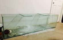 6FT SOLID GLASS REPTILE TANK Klemzig Port Adelaide Area Preview