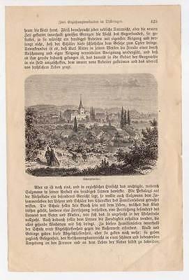 Quedlinburg-Sachsen-Anhalt original Holzstich 1880