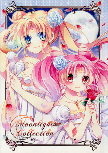 Sailor Moon Doujinshi Illustration Book Serena Rini Hotaru Luna Moonlight COLOR