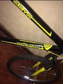 """Avigo mountain bike 20"""""""
