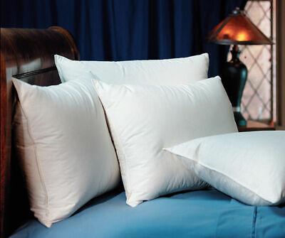 Pacific Coast Hilton Hotels Touch of Down Standard Pillow - Pacific Coast Down Pillows