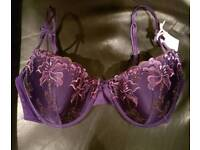 Brand New with Tags Ladies Next Bra - 36DD