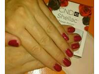 CND Shellac manicure only 10 £ !!! eyelash+eyebrows tinting 10 £ !!! December offer £££