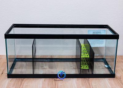Reef-Reactive SUMP/REFUGIUM Kit for 20 Gallon Long (Green) - Oceanbox Designs™