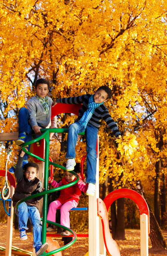 Your Guide to Buying a Climbing Frame for Young Children