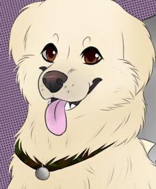 Cartoon Pet Drawings