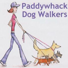 Paddywhack Dog Walkers