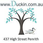 duck-in