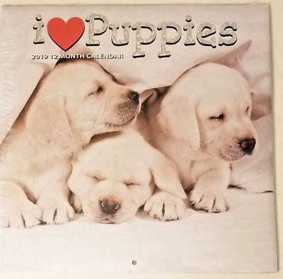2019 I Love Puppies 12 Month Wall Calendar 12