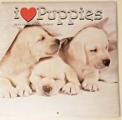 2019 Wall Calendar - I Love Puppies -12 Month-12x24 Inches Brand New w (I Love Puppies)