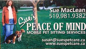 Looking for a professional pet sitter?