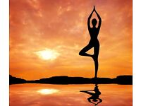 Yoga course for beginners' North-West London, NW4 from 2/12/16
