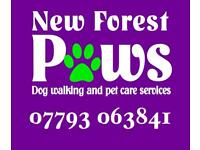 Dog Walking & Pet Care Services in the New Forest