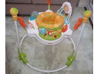 Fisher-Price Jumperoo: Rainforest Sunny Days