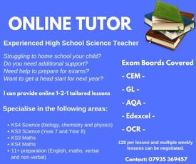 Online Tutor for GCSE Science, Maths and 11+. Qualified H School Teacher