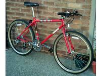 1990 Kona Lavadome Mountain Bike