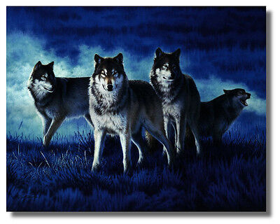 4 Wolves Stand Guard With BlueBackground 16x20John Naito Wall Art Print Picture