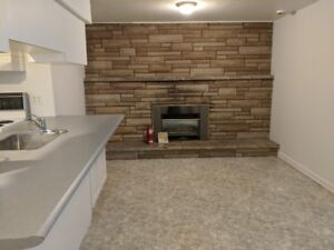 One Bedroom Basement Apartment on Lawrence Ave