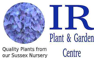 IR Plants and Gardens