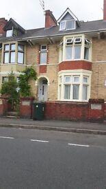 Double Room to Rent in Newport