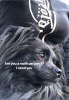 Are you math smart ?