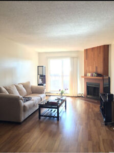 Roommate Wanted. Furnished Apartment. STUDENTS PREFERRED.
