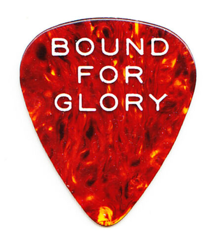 Vintage Woody Guthrie Bound For Glory Faux Tortoise Guitar Pick - 1976 Film