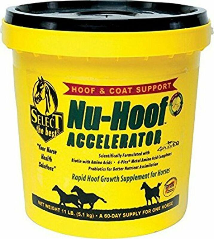 Nu-Hoof Accelerator Hoof & Coat Support for Horses 11 Pounds