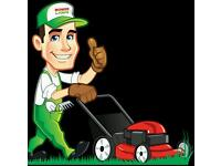 Ace Grass Cutting and Strimming Services *SAME DAY SERVICE*