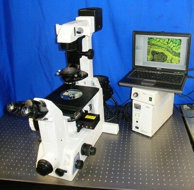 Nikon Eclipse Te 300 Inverted Fluorescence Phase Contrast Microscope 10 Mp