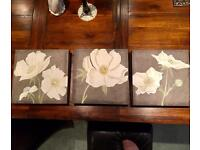 Set of three matching canvas frames, each measures 30cm x 30cm. Can send by Hermes if needed.