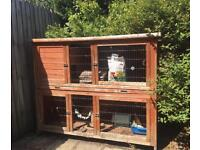 Rose Cottage Double Rabbit/Guinea Pig Hutch Pets At Home