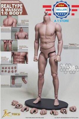 1 6 Male Figure Body Narrow Shoulder Soft Chest Jxs01 For Hot Toys Ttm22