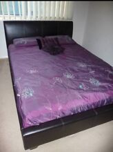 Queen Bed with Mattress Excellent Condition!!! Woonona Wollongong Area Preview
