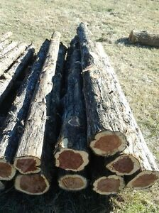 Cedar fence posts, cedar rails, cedar wood chips