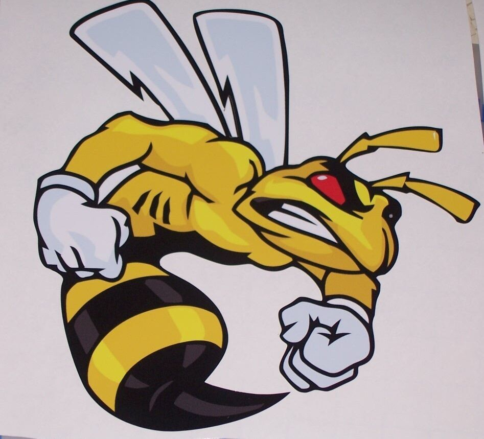 Angry SUPER BEE STICKER DECAL Ski Decals Doo Trailer Scat Pack rumble