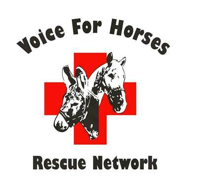 Voice For Horses Rescue